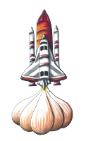 Illustration: Garlic Rocket