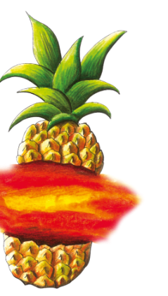 Illustration: Pineapple